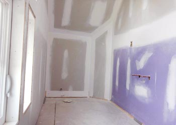 Remove and kill mold resisteant on drywall