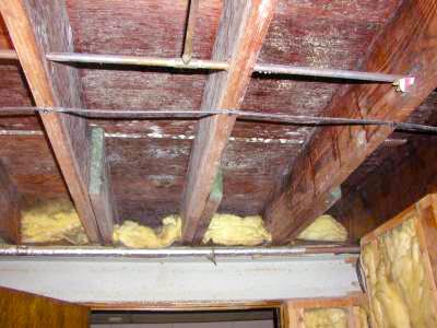 basement mold removal products