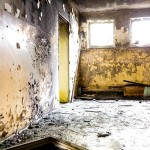 Black Mold Health Effects Treatment