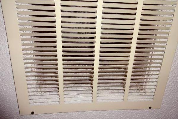 black mold in air vents