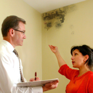 black mold removal toronto