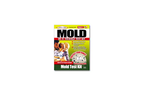 black mold test kit ace hardware