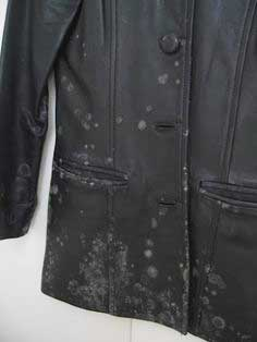 cleaning mold stains clothing