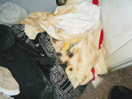 dry cleaning moldy clothes