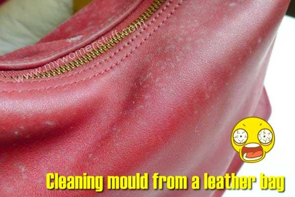 how to remove mildew