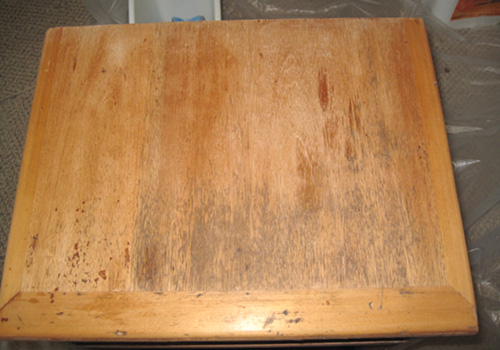 mold furniture wood