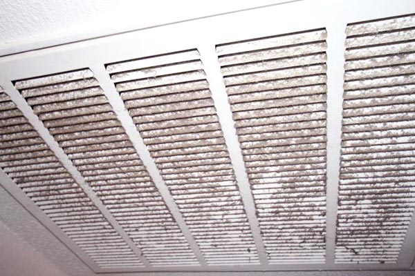 Mold In Air Vents