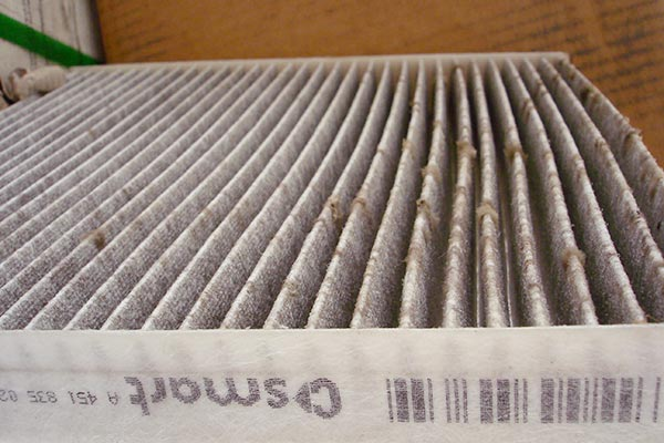 mold on air vents
