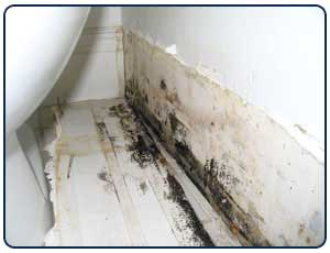 mold on bathroom ceiling