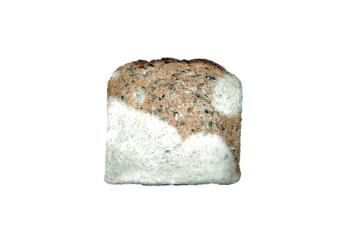 mold on bread safe to eat