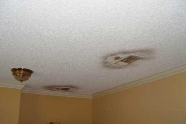 mold on ceiling fan