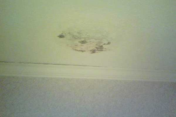 Mold On Ceiling In Closet