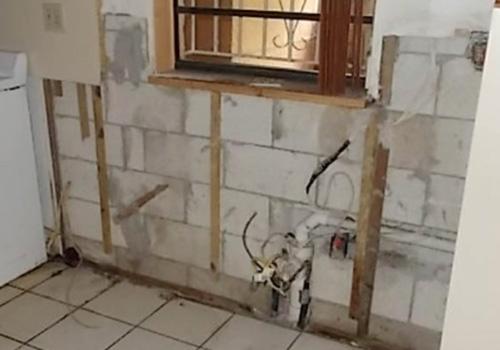 mold removal health canada