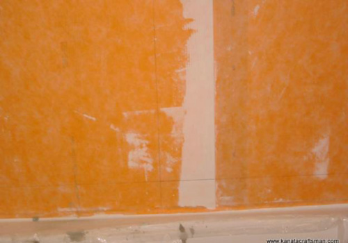 Pink Orange Mold In Shower