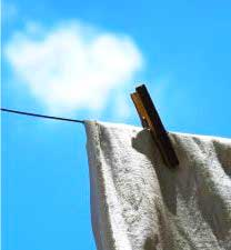 removing mold stains clothing
