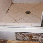 Best Mold and Mildew Cleaner for Shower