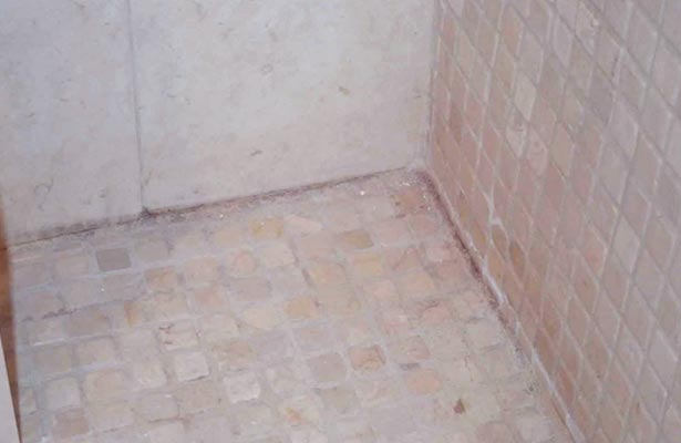 cleaning mold and mildew in shower grout