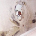 dangers of cleaning black mold