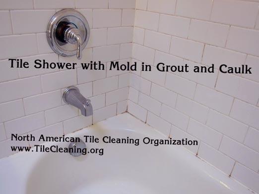 get rid of mildew in shower caulk
