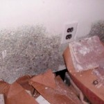 Can You Get Rid of Black Mold