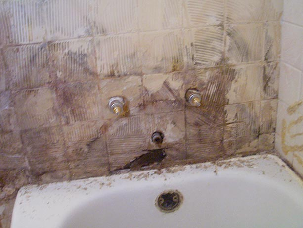get rid of mold in bathroom sink drain