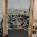 get rid of mold on bathroom ceiling