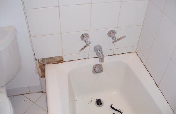 how to clean a moldy shower drain and stall