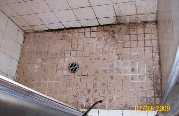 how to clean moldy shower caulking and doors