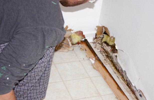 how to detect black mold in a house