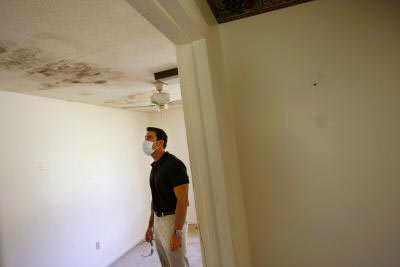 side effects of mold in the home