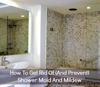clean mildew from shower door
