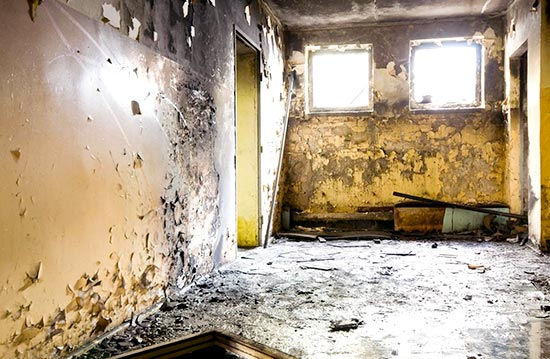 effects of prolonged exposure to black mold