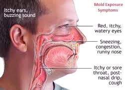exposure to black mold health symptoms