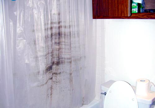 How To Get Mold Out Of Curtains