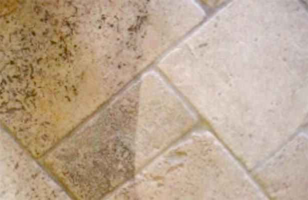 How Clean Mildew From Shower