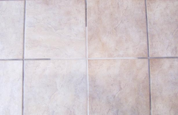 how to remove black mold from shower tile grout Orange Mold