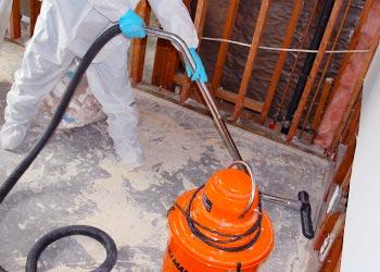 Orange Mold Damage County