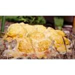 Orange Mold in Garden