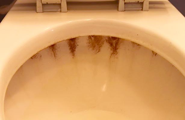 orange mold in toilet tank