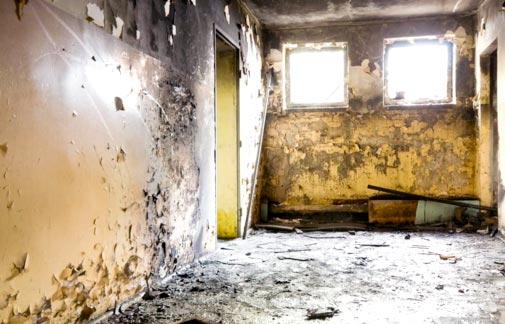 Health Issues and Effect Caused By Black Mold