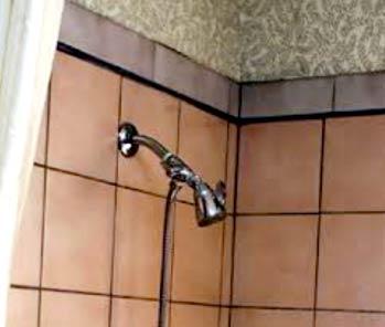 Get Rid Black Mold In Dangerous Bathroom