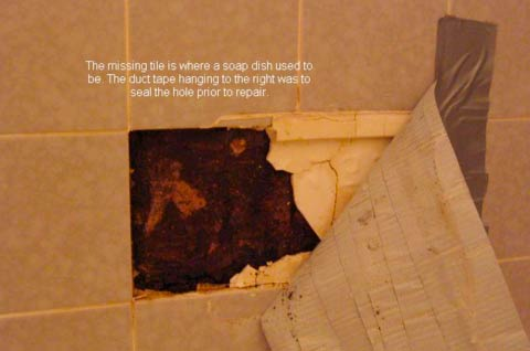 How To Clean and Get Rid Black Mold In Dangerous Bathroom