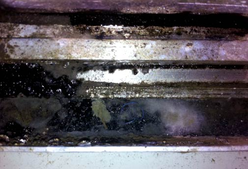 How To Clean Mold And Mildew