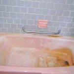 Pink Mold In Shower